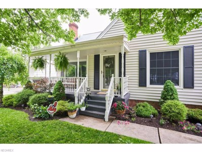 5815 Chestnut Rd, Independence, OH 44131 - MLS#: 4008433