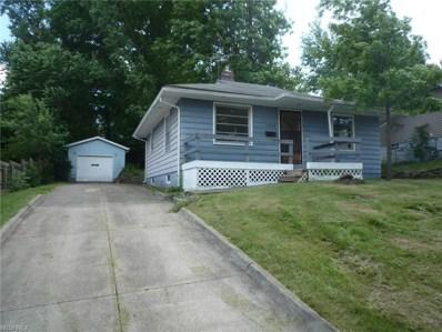 1226 Onondago Ave, Akron, OH 44305 - MLS#: 4008481