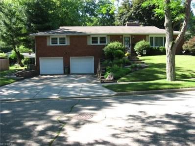 687 Garnette Rd, Akron, OH 44313 - MLS#: 4008627