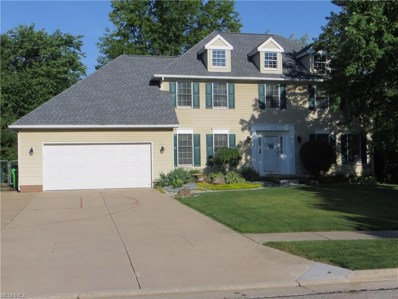 4738 Emerald Woods Dr, Stow, OH 44224 - MLS#: 4008683