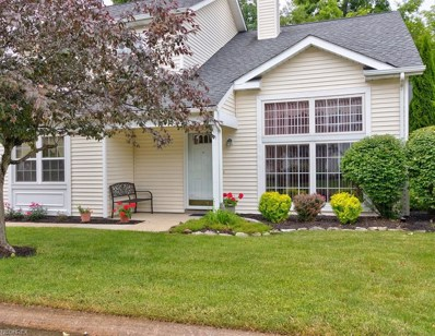 9725 Country Scene Lane, Concord, OH 44060 - MLS#: 4008837