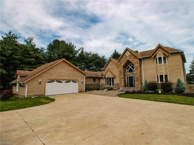 7521 Wadsworth Rd, Medina, OH 44256 - MLS#: 4009241
