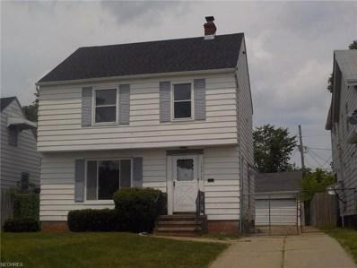 13312 Harold Ave, Cleveland, OH 44135 - MLS#: 4009782