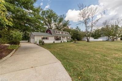 41430 Butternut Ridge Rd, Elyria, OH 44035 - MLS#: 4009812