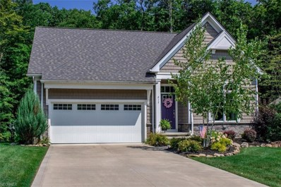 8376 Raleigh Place, Concord, OH 44077 - #: 4009827