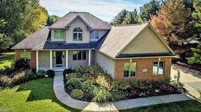 24235 Ridge Rd, Minerva, OH 44657 - MLS#: 4010224