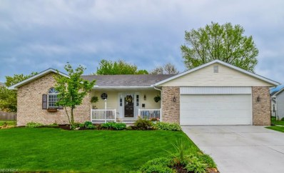 405 Sheffield Ave NORTHEAST, Massillon, OH 44646 - MLS#: 4010299