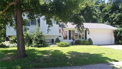 13 Orchard Grove, Painesville, OH 44077 - MLS#: 4010600