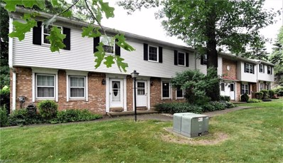 134 S Main St UNIT B11, Munroe Falls, OH 44262 - MLS#: 4010843