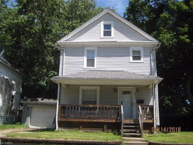 371 Lillian St, Akron, OH 44307 - MLS#: 4011381