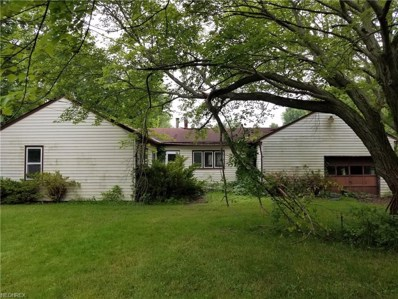 38869 Chestnut Ridge Rd, Elyria, OH 44035 - MLS#: 4011389