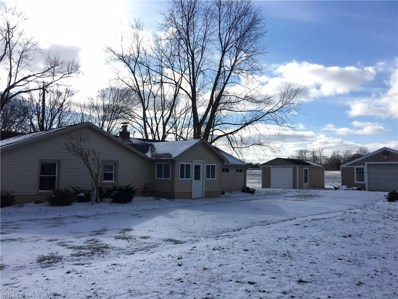 10678 Detwiler Road, Canfield, OH 44406 - #: 4011599