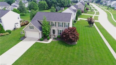 4448 Lexington Ridge Dr, Medina, OH 44256 - MLS#: 4012040
