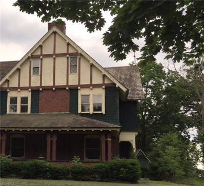 253 Park Ave, Youngstown, OH 44504 - MLS#: 4012712