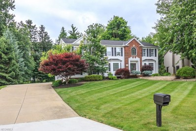 4640 White Angel Dr, Perry, OH 44081 - MLS#: 4013073