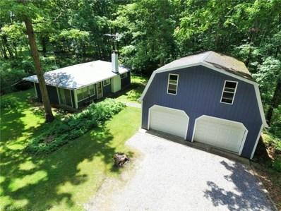1491 Woodland Ln, Deerfield, OH 44411 - MLS#: 4013300