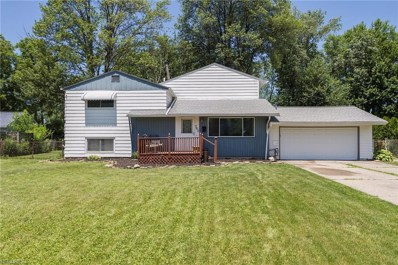 703 East Dr, Sheffield Lake, OH 44054 - MLS#: 4013631