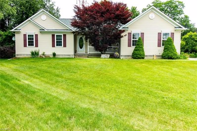 169 Sandstone Dr, Painesville Township, OH 44077 - MLS#: 4013766