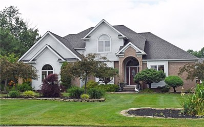 9471 Stone Mill Dr, Mentor, OH 44060 - MLS#: 4013868