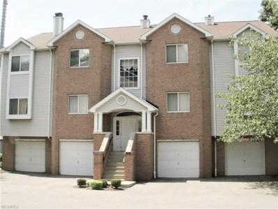 377 Village Pointe Dr UNIT C-3, Akron, OH 44313 - MLS#: 4013931