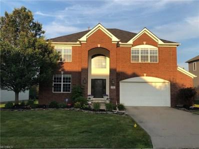 95 Vista Ridge Cir, Hinckley, OH 44233 - MLS#: 4013995