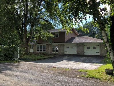 16792 Gonzales Ave, East Liverpool, OH 43920 - MLS#: 4014178