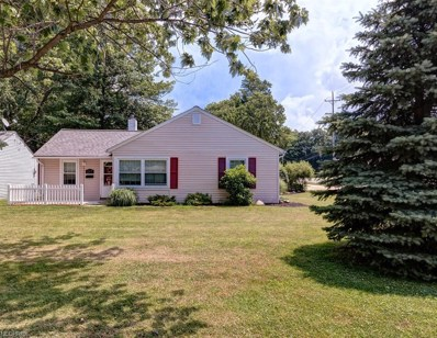217 Hawthorne Dr, Painesville, OH 44077 - MLS#: 4014628