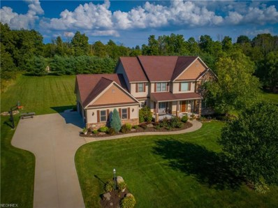 5619 View Point Dr, Medina, OH 44256 - MLS#: 4014732