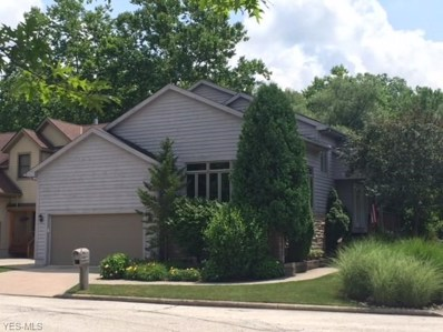 50 Riverview Court, Chagrin Falls, OH 44022 - #: 4014862