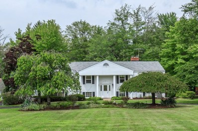 10271 Page Dr, Mentor, OH 44060 - MLS#: 4014917