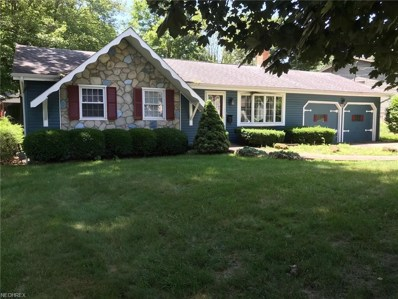 3029 Straley Ln, Youngstown, OH 44511 - MLS#: 4015697