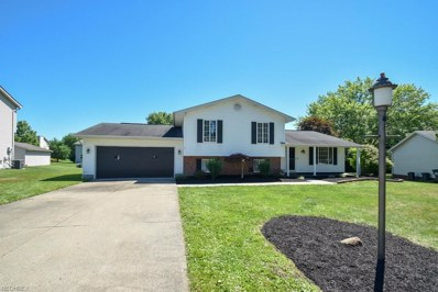 6945 Slippery Rock Dr, Canfield, OH 44406 - MLS#: 4016063