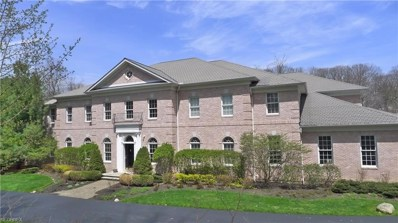 60 Deep Creek Ln, Moreland Hills, OH 44022 - MLS#: 4016339