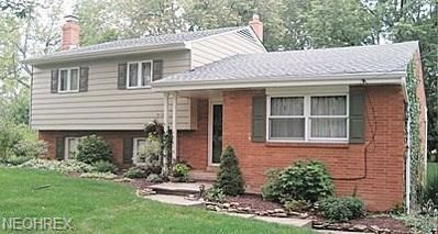 6573 Mill Rd, Brecksville, OH 44141 - MLS#: 4016358