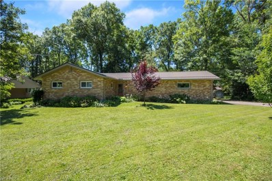 281 Moreland Dr, Canfield, OH 44406 - MLS#: 4016371