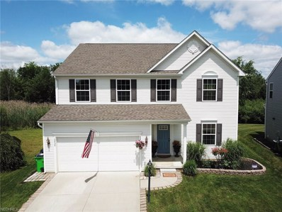 10434 Joyce Ct, Reminderville, OH 44202 - MLS#: 4016418