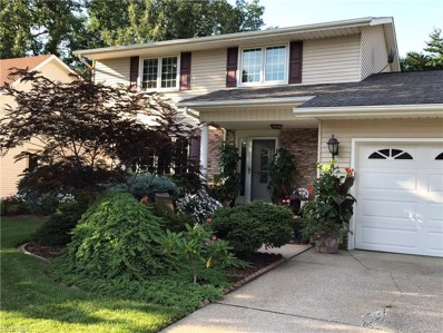 658 Appleseed Drive, Lorain, OH 44053 - #: 4016772