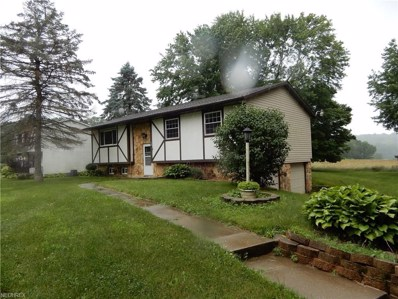 12034 Milly Dr, Doylestown, OH 44230 - MLS#: 4017393