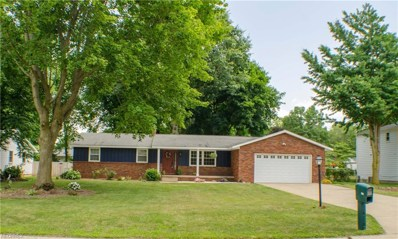 389 Cartwright Dr, Fairlawn, OH 44333 - MLS#: 4017433