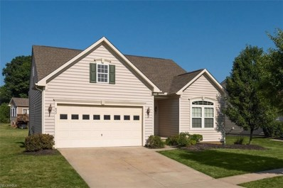 822 Stonewater Dr, Kent, OH 44240 - MLS#: 4017631