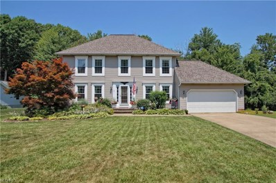 9915 Weathersfield Dr, Concord, OH 44060 - MLS#: 4017776