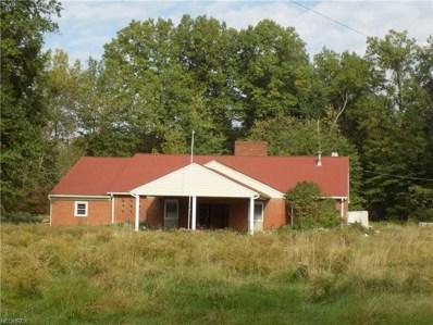 4820 Villa Marie Rd, Lowellville, OH 44436 - MLS#: 4017830