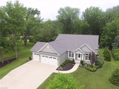 10215 Brian Dr, Concord, OH 44077 - MLS#: 4018045