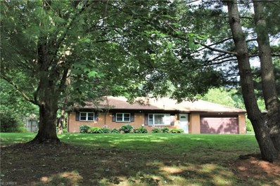 12990 Kenyon Dr, Chesterland, OH 44026 - MLS#: 4018473