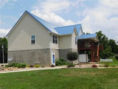 312 Wilderness Valley Road, Davisville, WV 26142 - MLS#: 4018649