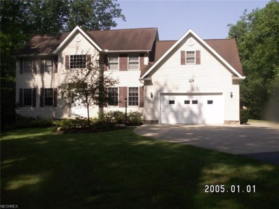 12156 Caves Rd, Chesterland, OH 44026 - MLS#: 4018764