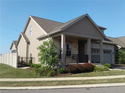 541 Quarry Lakes Drive, Amherst, OH 44001 - #: 4018860