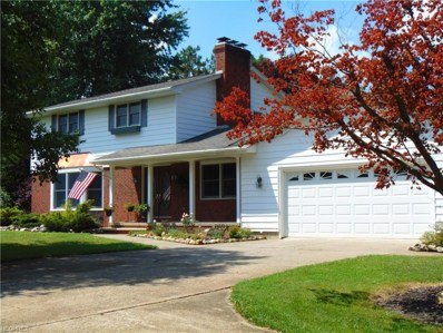 10962 Gore Orphanage Rd, Amherst, OH 44001 - MLS#: 4019054