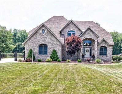 7926 Chaffee Rd, Sagamore Hills, OH 44067 - MLS#: 4019338