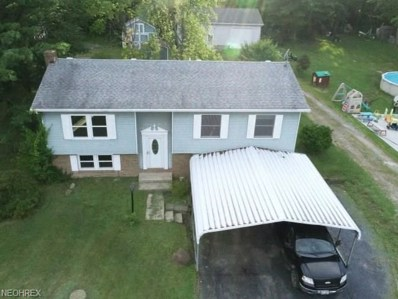 3047 Anderson Ant, Southington, OH 44481 - MLS#: 4019481